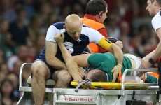 Ireland suffer injury setback as Munster flanker ruled out of World Cup