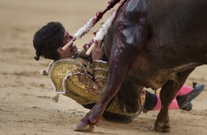Four people were gored to death by bulls over the weekend