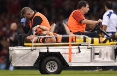 Disaster for Wales as Halfpenny and Webb suffer injuries in Italy win