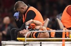 Why did Gatland play Leigh Halfpenny against Italy, asks Shane Williams
