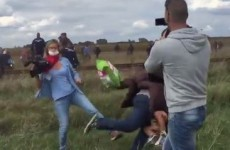 Hungarian journalist fired after 'kicking migrants'
