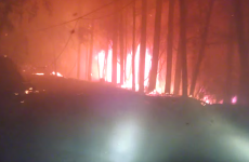 WATCH: Family films terrifying escape from wildfire