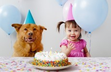Good news for film producers … people can now sing 'Happy Birthday' without being sued