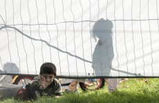 From despair to euphoria and back: Life for a Syrian refugee family in Germany