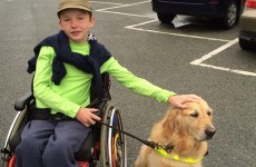 'My son will never live independently. I fear for his future when I'm dead'