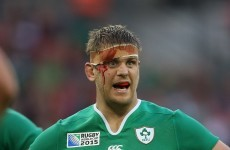 Joe Schmidt 'a great coach, but an intense, scary guy as well'