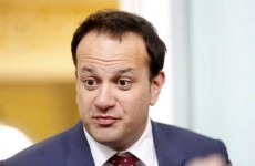 Leo announces plans to get rid of HSE within five years