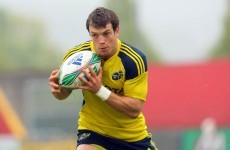 Former Munster star on life after rugby, Ireland's WC chances and his new business