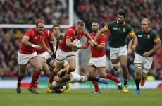 As it happened: South Africa v Wales, Rugby World Cup quarter-final