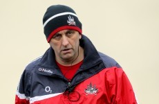 Peader Healy appointed new Cork senior football manager