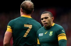 Springboks want to 'unite a nation' after brutal murders in Johannesburg