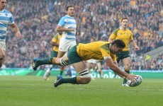 As it happened: Argentina v Australia, Rugby World Cup semi-final
