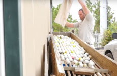 This man claims to have made $15 million from finding golf balls… but is it possible?