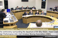 'Nobody wanted Billy to leave' IABA tells Oireachtas committee