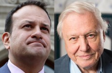 'Leo needs to accept he's not the David Attenborough of the health service'