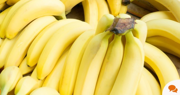 In Ireland we eat about 5 million bananas every week, but do you know where they come from?