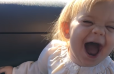 This adorable two-year-old girl lip-syncing Adele's Hello absolutely kills it