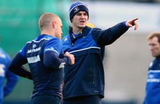 Leinster backed into a corner, but intent on roaring out in Toulon