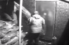 CCTV footage shows 190 Christmas trees being stolen from mini market