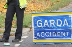 Man (45) killed after being hit by car when moving dead horse off the road