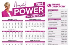 Averil Power defends using taxpayers' money to print 73,000 calendars