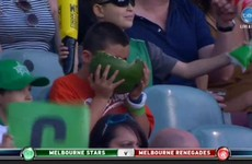 This kid eating a whole watermelon at a cricket game is the hero we all needed