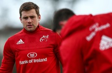 CJ Stander was part of the Ireland training squad at Carton House today