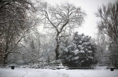 January will be the coldest month this winter – forecast