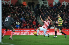 Jonathan Walters on target as Stoke City move up to seventh