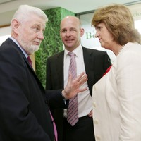 Labour TD criticises Burton for giving David Begg state board role without public process