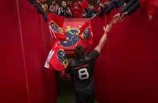 CJ Stander: 'The physicality and passion for the jersey came through for us'