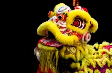 7 reasons Irish people need to start celebrating Chinese New Year