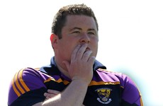 Basketball commentator famous for 'Dowwwnnn-Tooowwwnn!' joins Wexford backroom team