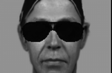 Have you seen this man? Sketch released of alleged au pair attacker