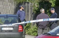 Ombudsman rules that Garda shooting in Lusk was 'lawful'