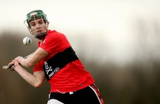 Cork seniors star as UCC put 4-18 past Maynooth