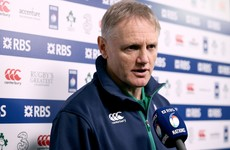 'There's a lot of bruised bodies' – Schmidt outlines Ireland's week ahead of Paris trip