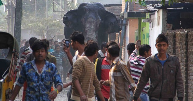 In photos: Wild elephant goes on rampage in Indian town