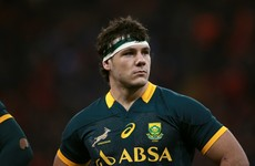 Ulster announce the signing of South African flanker Marcell Coetzee