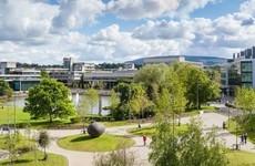 UCD journalist defends report after investigation dismissing 'revenge porn' allegations