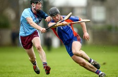 Limerick senior Hannon bags 1-7 in first half as Mary I make Fitzgibbon semis at a canter