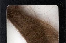 Lock of John Lennon's hair sells for thousands at auction