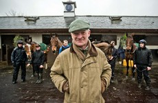 5 things we learned visiting Willie Mullins' yard today