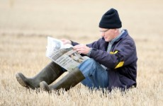 An urban dweller's guide to the National Ploughing Championships