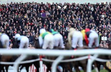 5 Cheltenham bets to land you in the winner's enclosure