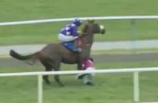 Irish jockey Bryan Cooper walks away unharmed after getting trampled by horse
