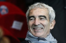 Ex-France boss Raymond Domenech claims he came close to managing Ireland