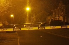 Associate of The Monk shot dead at housing estate in Co Meath