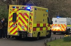 Group robbed and threatened with syringe in St Stephen's Green