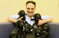 Everyone fell in love with the Irish 'Supervet' after last night's episode